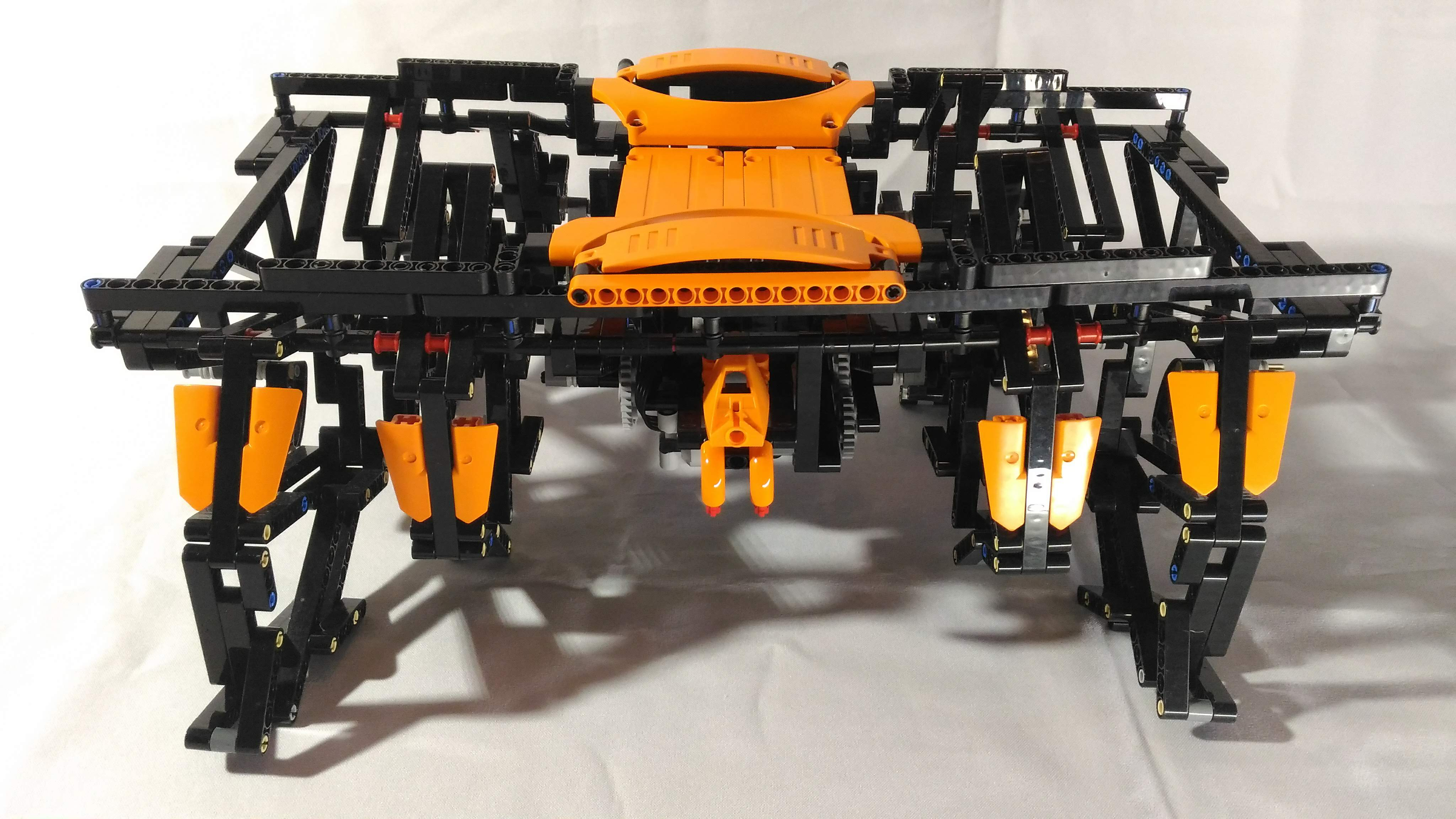 Tarantulos by braker23